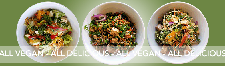 Vegan Salads - All Vegan All Delicious